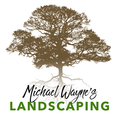 Tree Services Columbia Sc Michael Wayne S Landscaping And Tree Service